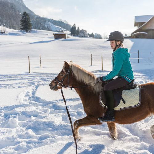 Familotel Swiss Holiday Park, Kind bei Reitstunde, Kinderhotel mit Reitstunden